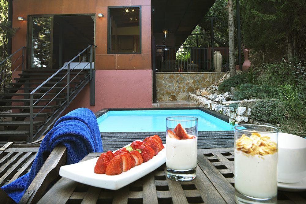 Suite con piscina montsant hotel restaurante for Alberca restaurante